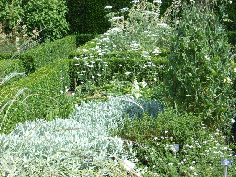 Weißer Garten Sissinghurst urlaub090713